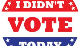 i-didnt-vote